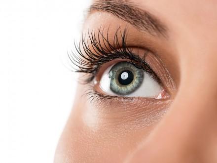 offer_eyelash
